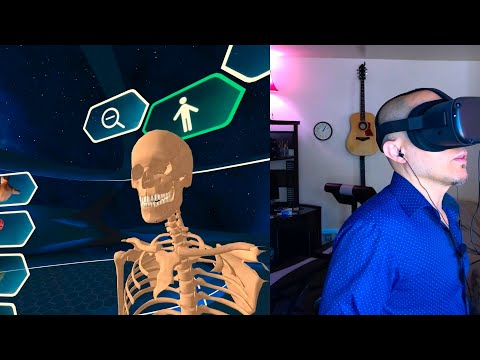 Human Anatomy VR On The Oculus Quest