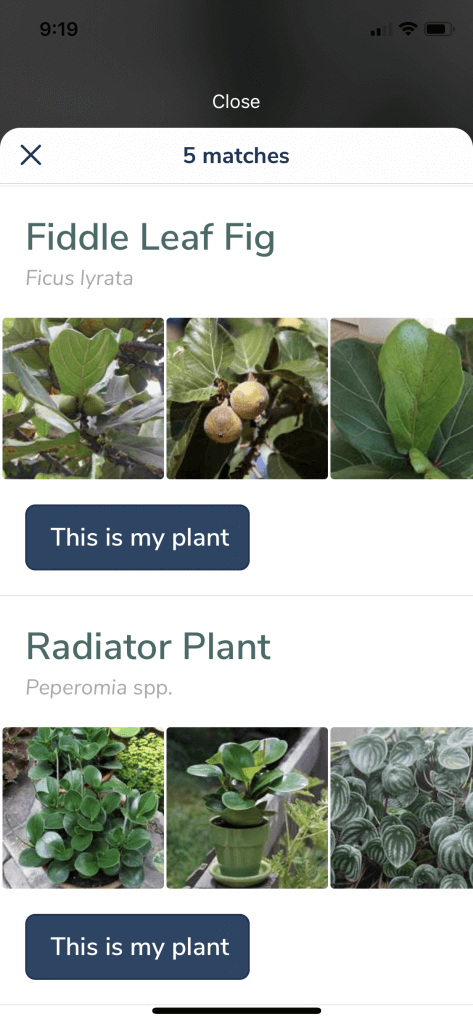 Candide Labels Guide: AR Plant & Gardening App