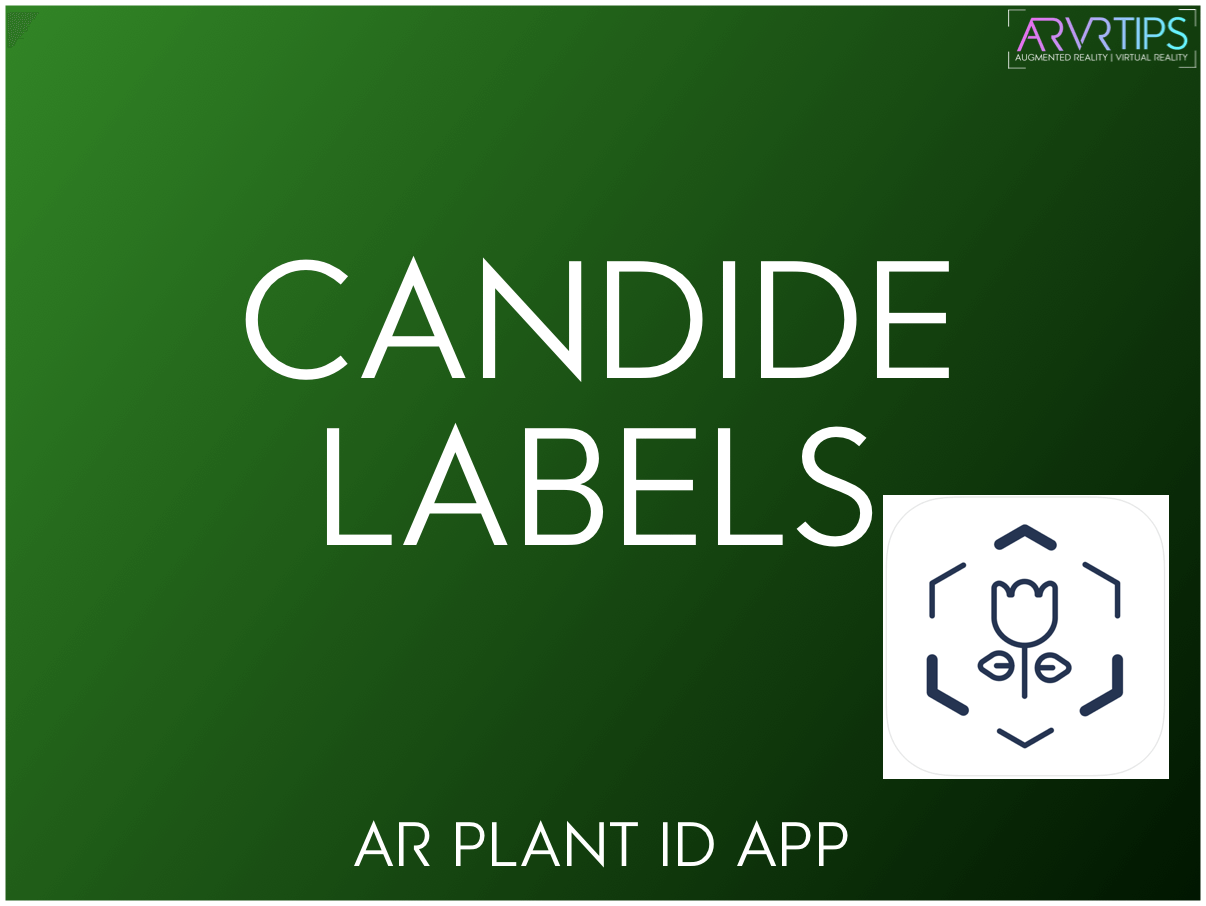 candide labels